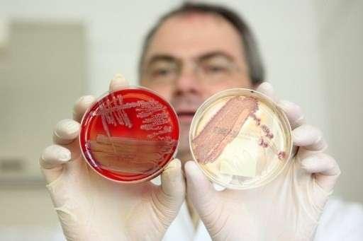 Кишкова інфекція: симптоми і лікування