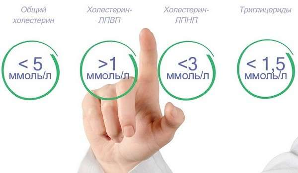 Порушення ліпідного обміну: симптоми і лікування