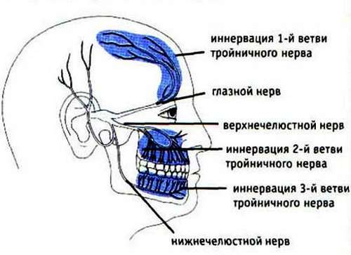Невралгія трійчастого нерва: симптоми і лікування