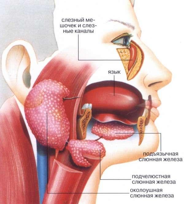 Синдром Шегрена: симптоми і лікування