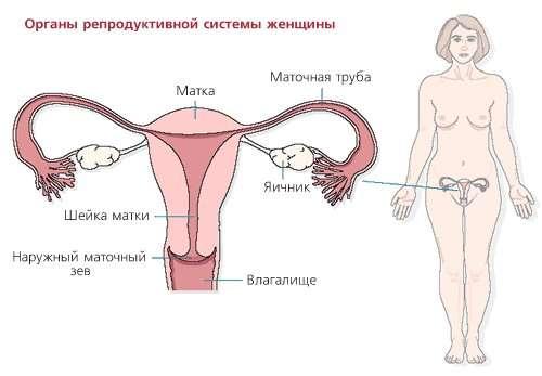 Позаматкова вагітність: симптоми і лікування