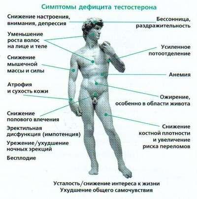 Чоловічий клімакс: симптоми і лікування