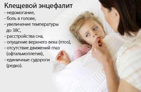 Кліщовий енцефаліт: симптоми і лікування