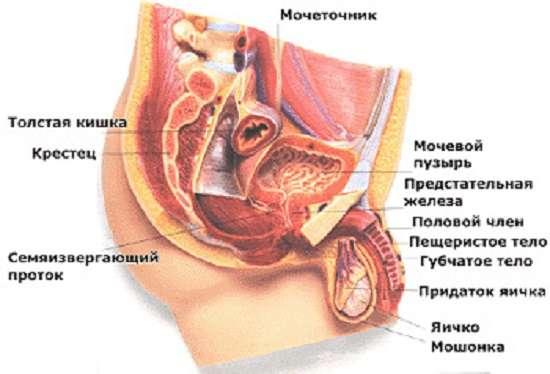 Уретрит: симптоми і лікування