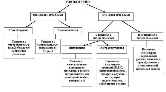 Глюкозурія: симптоми і лікування